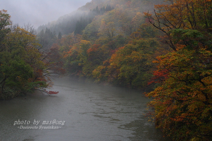山形県小国町の紅葉